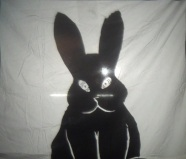 Bunny with evil eyes